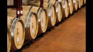 De witte wijnen van Tampesta worden opgevoed op nieuwe eiken houten vaten!