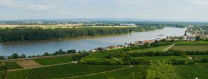 Rheinhessen rivier