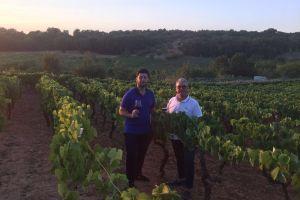 Italiaanse jubileumwijnen: ongeëvenaard in hun klasse